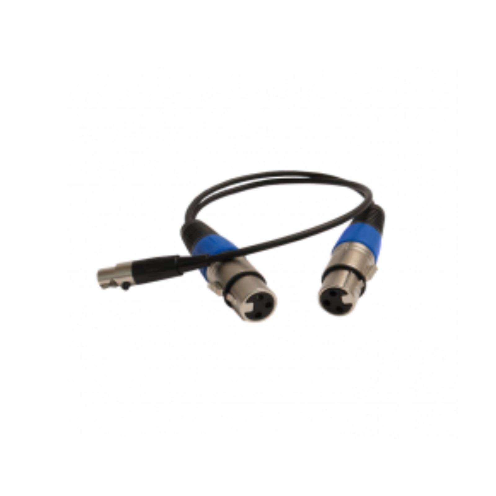 CBL114: 2 x 3-pin Male XLR to 5-pin Female Mini-XLR Cable